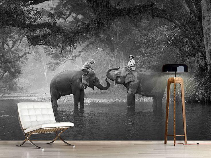 Selbstklebende Tapete Nach Ma? : ?ber 1.000 Ideen zu ?Elefanten Tapete auf Pinterest Tapeten