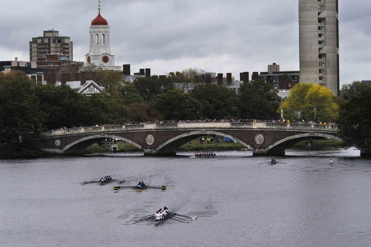 Head Racing: The Coxswain's Perspective, with Phelan Hill of Team GB