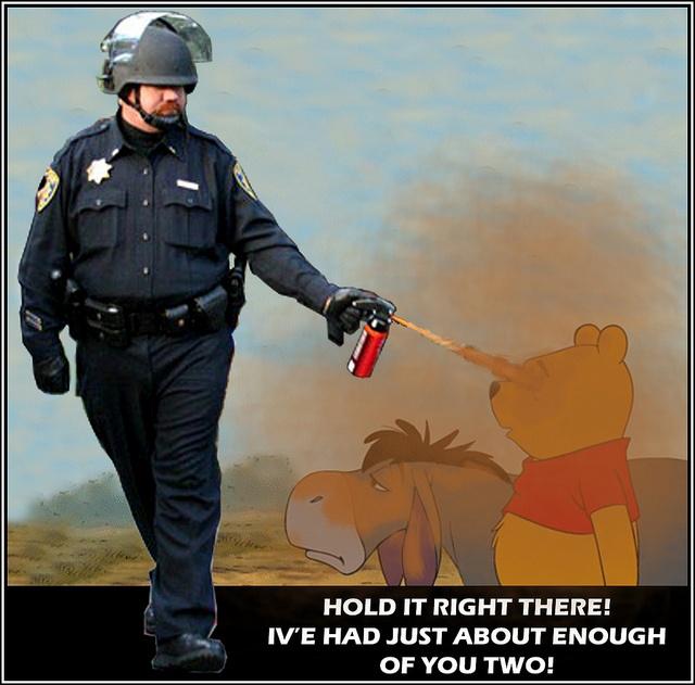 9fa02887c2f3424934026888a579ac46 meme cops 26 best pepper spray cop meme images on pinterest pepper, cops and