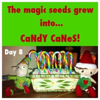 Elf on the shelf ideas The magic seeds grew into candy canes