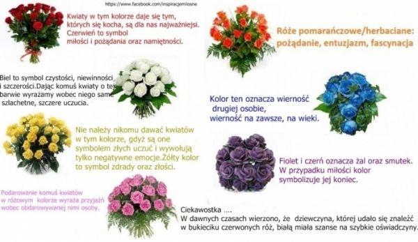 Warto pamiętać.Znaczenie kolorów kwiatów.