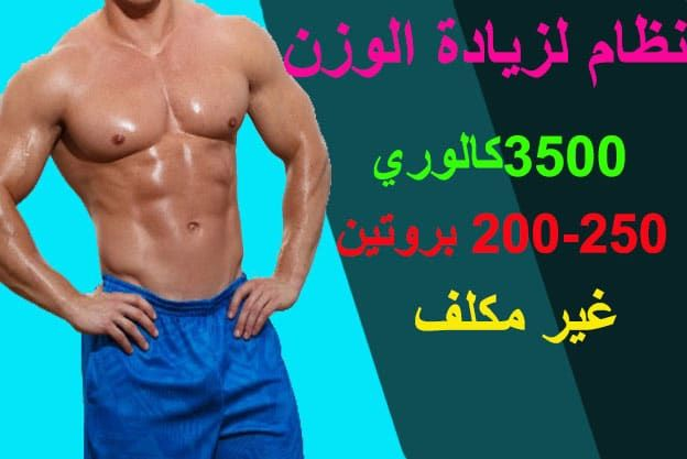 افضل نظام و برنامج غذائي صحي يومي لزيادة الوزن و للنحافة 3500 سعرة حرارية غير مكلف Swimwear Trunks Fashion