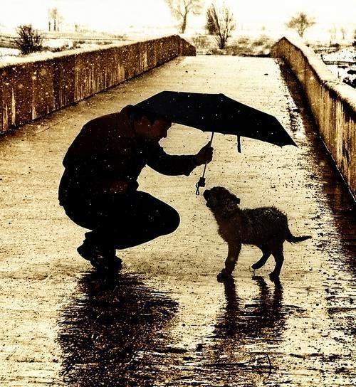 Vivendo a Vida bem Feliz: Pequenos gestos: grandes atitudes!