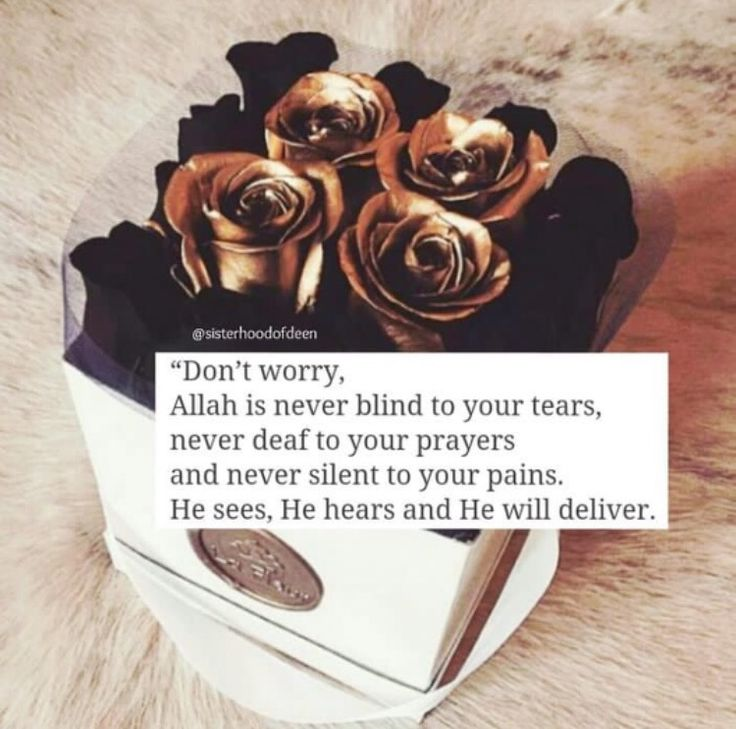 Alhamdhullillah!❤