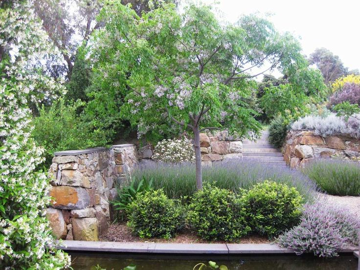 Owned And Managed By Brother And Sister Team, Julian U0026 Sara Ronchi   Julian  Ronchi Garden Design U0026 Nursery Specialises In Fine Residential And  Commercial ...