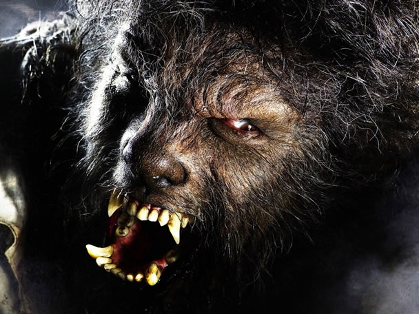 Werewolf: Wolfman, Horror Movies, Classic Horror, Wolf Men, Rick Baker, Werewolves, Classic Monsters, Bull, Vampires And Werewolf Movies