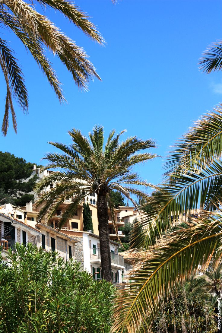 Port Soller , Mallorca