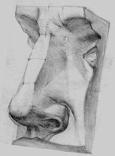 Рис. 4 - Форма носа в разных положениях - Е. А. Маковкин рисунок деталей головы методические указания