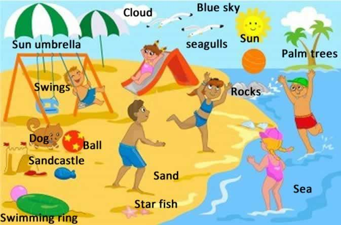 At the seaside and beach lesson. You will learn about the various things that you might see at most seasides and beaches.