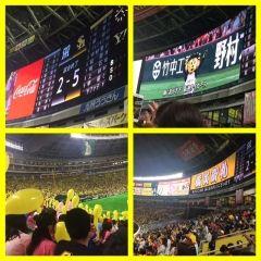 福岡ヤフオクドームで開催された阪神との交流戦を観戦してきました なかなか行くことが出来ませんでしたが終盤になってやっと行けました(;) どちらがホームか分からないくらいの数の阪神ファンの声援にも負けず試合は勝利 やっぱり交流戦は盛り上がりますね tags[福岡県]