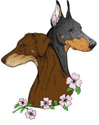 "doberman rescue logos | Atlanta Doberman Pinscher Club - ""White"" Dobermans"