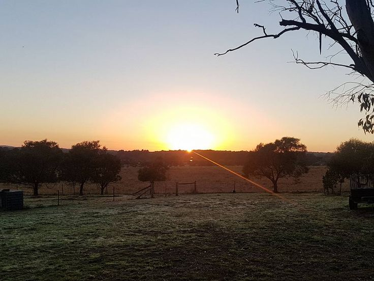 Sunrise goals! Such a beautiful photo taken by Gutter-Vac Central West NSW. Give Gutter-Vac Central West NSW a call on 1300 654 253 to discuss your needs.
