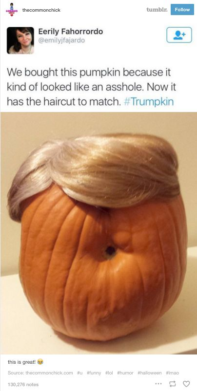 gurl:  40 Tumblr Posts About Donald Trump That Will Make You Laugh Until You Cry gurl on instagram and pinterest