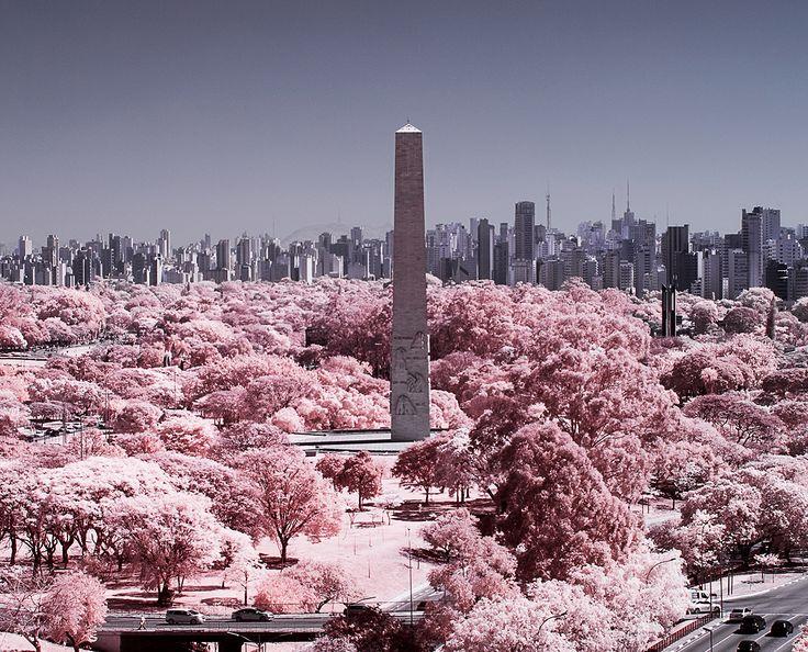 Obelisco, por Su Amorim.