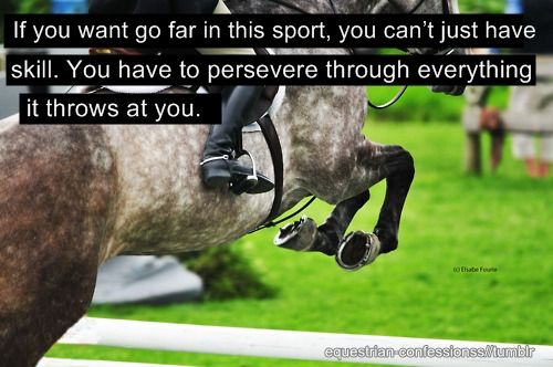 True: Equestrian Jumping, Hors Jumping Quotes, Equestrian Quotes, Hors Events Quotes, Hors Quotes, Sports, Equestrian Life, Horses Quotes, Horses Life