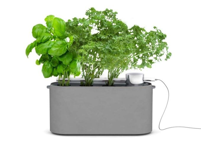 Keep your houseplants for years Our indoor garden kits make it