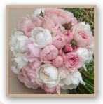 Neat posies of david austen roses
