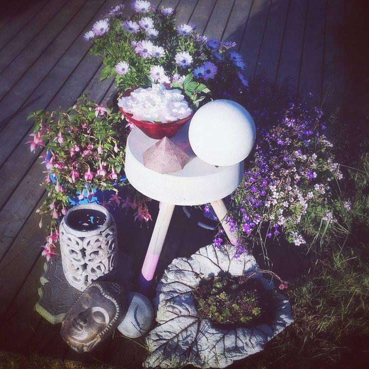 From my garden  #garden #flowers #concrete #rose #roses #albarose #diy #betong #hage