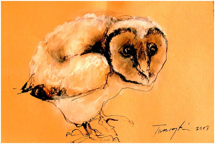 Jakab  Tus , pasztell , papír  18 x 24 cm