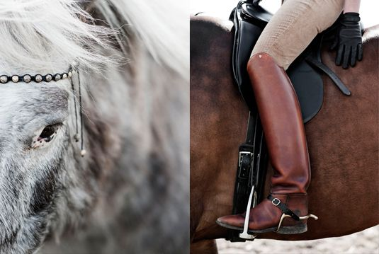 Equestrian style - photography by Ditte Isager