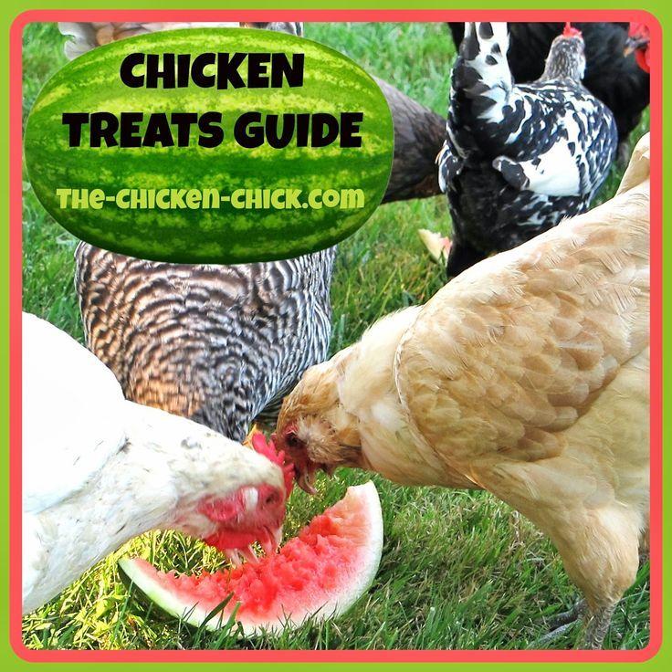 Source Extra Kitchen Scraps For Backyard Flocks: 78 Best Feeding Your Flock Images On Pinterest