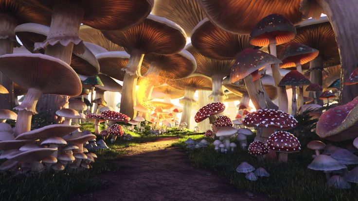 Mushroom Forest, by Andrei Serghiuta. Showing a 3D rendered animation of giant mushrooms and faerie swarm. Rendered using Maya and mental ray.