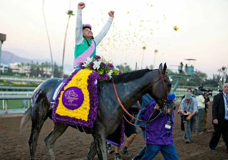 Arrogate and Mike Smith, Breeders' Cup Classic Champions