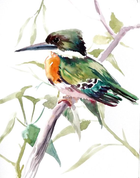 Green Kingfisher original watercolor painting 11 X by ORIGINALONLY, $24.00