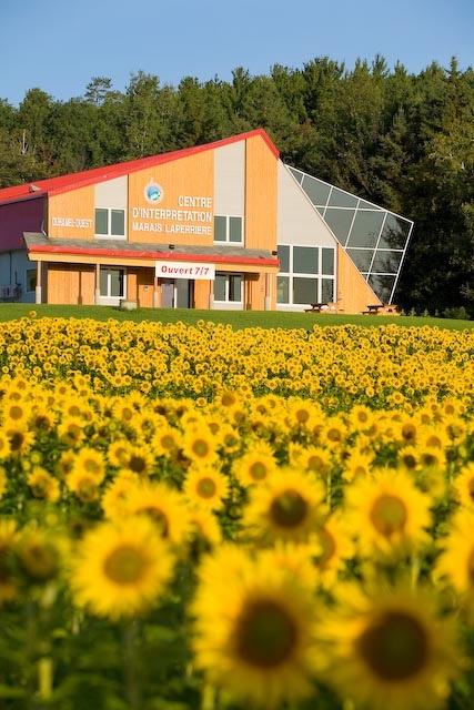 Centre d'interprétation Marais Laperrière by Tourisme Abitibi-Témiscamingue via Flickr