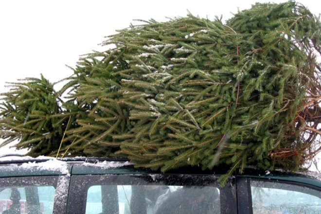 Autózz biztonságosan decemberben is!  http://automentomano.hu/2017/12/07/biztonsagos-autozas-decemberben-is/