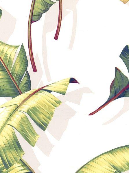printable palmier