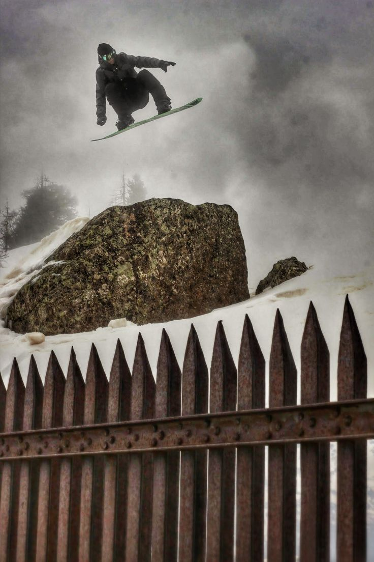 Fierce Creatures over the iron fence. #snowboard #fog