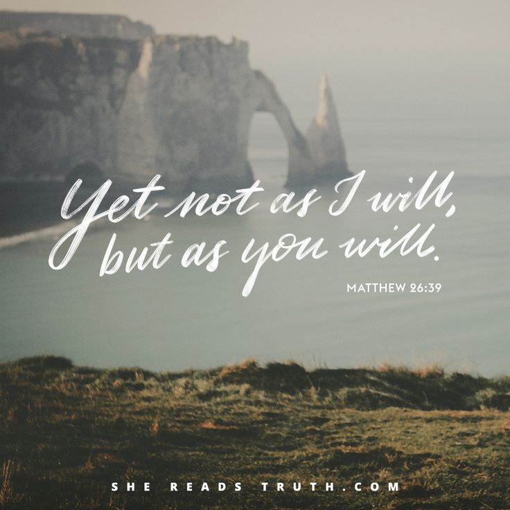"""Yet not as I will, but as you will."" - Matthew 26:39  // Matthew Bible study: This Is Jesus from SheReadsTruth.com"