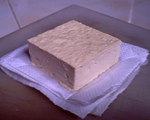 Place the tofu on a double layer of paper towels.