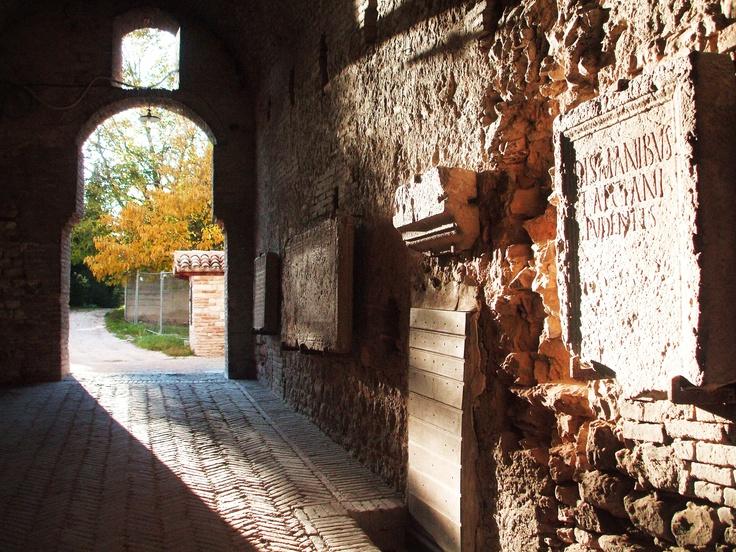arrivando al Museo Civico Archeologico Vernarecci