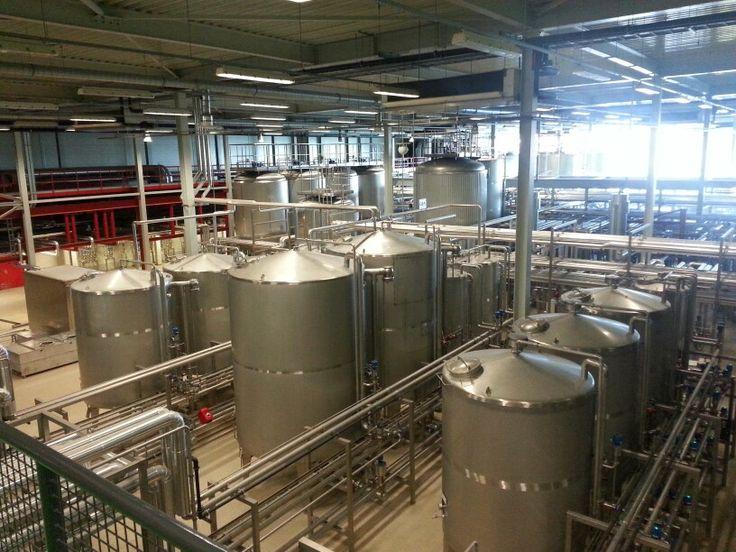 Lager kelder grolsch bierbrouwerij