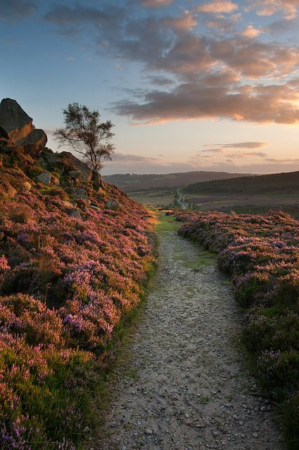 Burbage Path, Sheffield, UK #socialsheffield #sheffield Felting landscape inspiration
