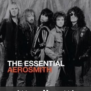 Aerosmith!!! I love that wings! A tatoo that I'd do if I had courage!