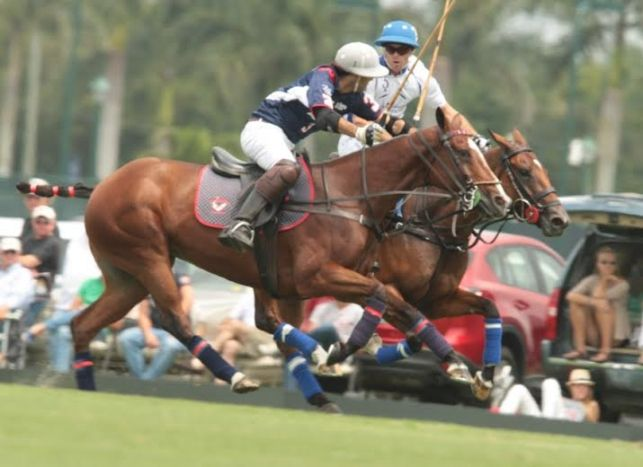 "Valiente and Alegria in 2014 Maserati US Open final - Living Polo. Adolfo Cambiaso is seriously injured and had been replaced by Juan Martin Nero another 10 goaler and who plays with Adolfo in ""Dolfina"" during the Argentine season."