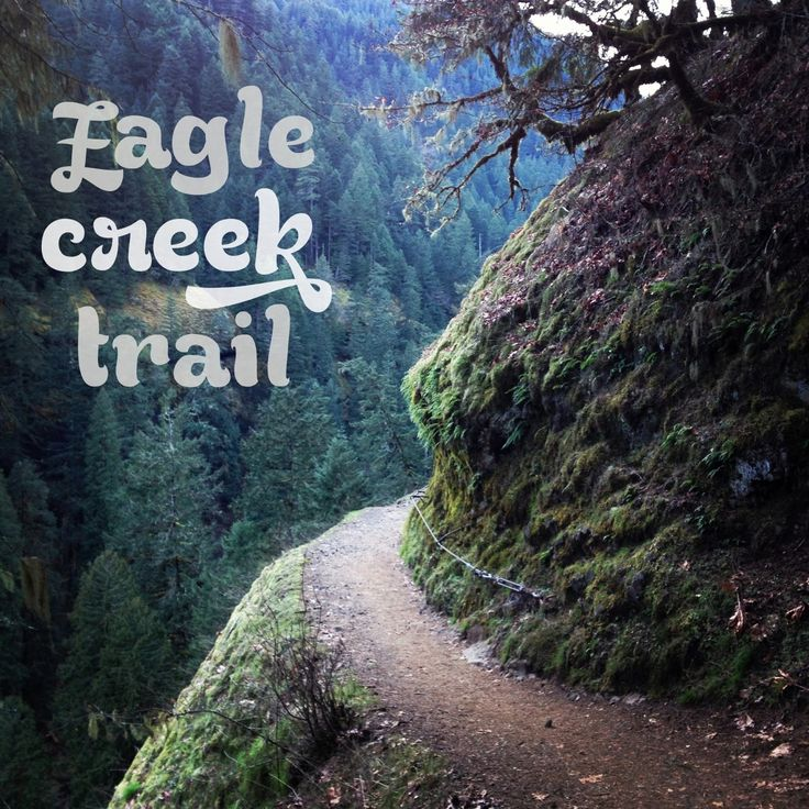 Hiking the Eagle Creek Trail Portland Oregon