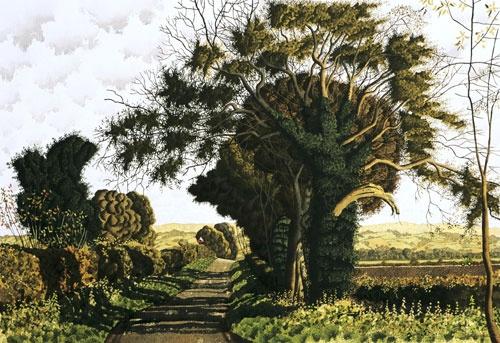 Simon Palmer, Looking to the Hambleton Hills