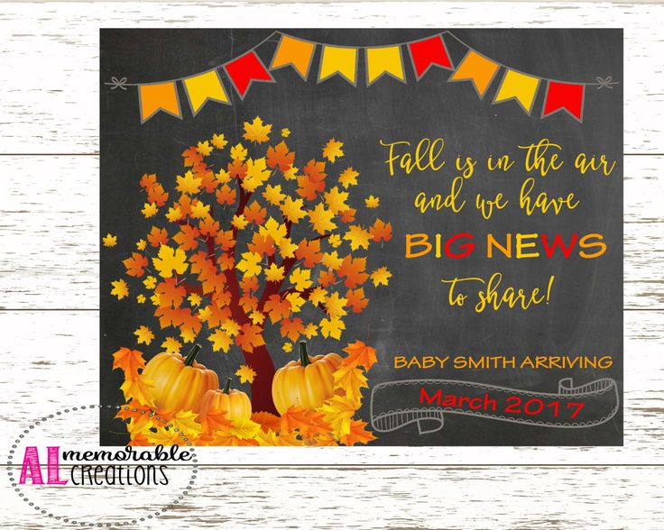 Fall Pregnancy Announcement Photo Prop/New Baby Announcement/Fall is in the…