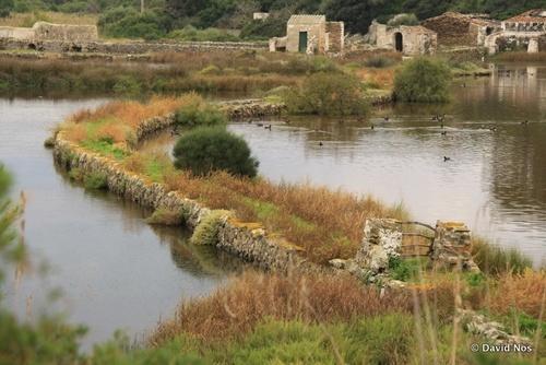 Patrimoni etnològic de S' Albufera d' Es Grau. Menorca
