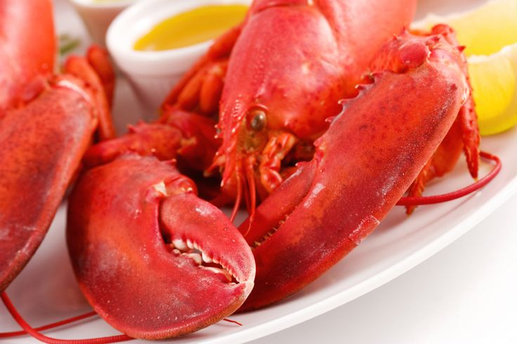 WIN 10 Pounds of Fresh Cooked Lobster