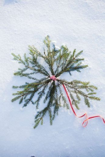 Gör en julstjärna av granris Ur Lantliv, Av Anna Hänström, Foto Klas Sjöberg
