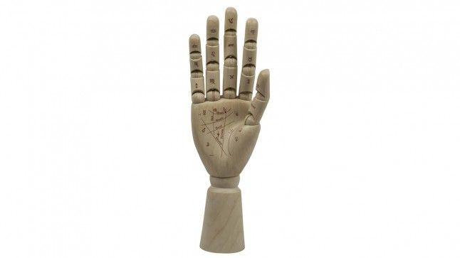 Beeld Palmist Hand MG009