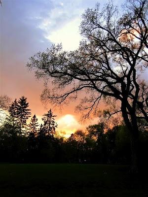 Munson Park ~ Photo by Bonnie Falk (1215Th): Photo