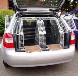 dog cages in car