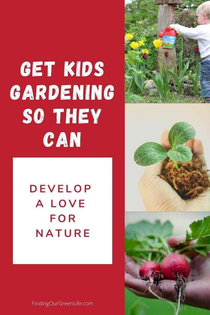 9faa842c788525389fd701f6564488e5 - How Does Gardening Help The Environment