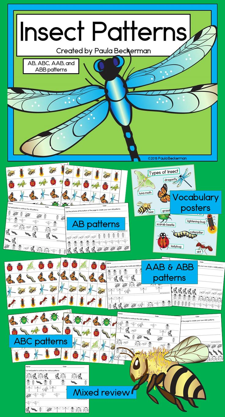 Insect patterning activities (AB, ABC, AAB & ABB patterns) with gorgeous graphics: ladybug, butterfly, moth, bee, grasshopper, dragonfly, caterpillar, scarab beetle and more. This is an easy math center to prepare and use with preschool/kindergarten/first grade! TpT$